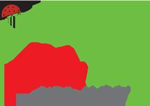 Ladybug Photo Logo